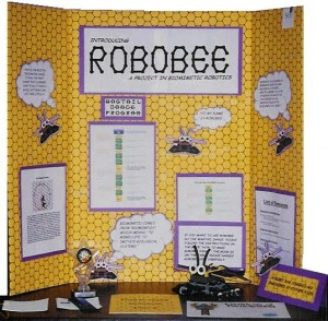 This Science Fair Display Shows Hexagonal Graph Paper Use